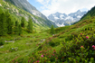 85902555; © by paul – Fotolia.com